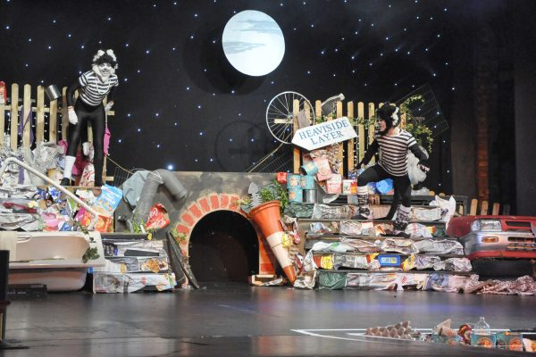 Musical theatre performance of cats in Frome