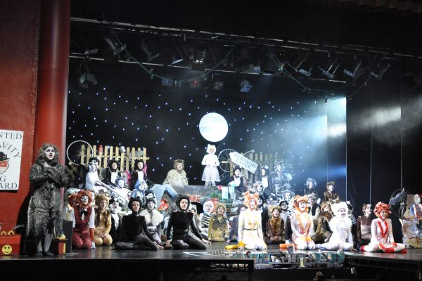Cast of CATS performed by Frome Musical Theatre Company