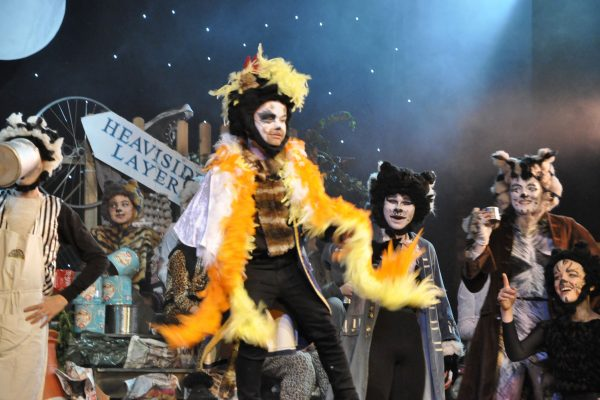 CATS performed by FMTC